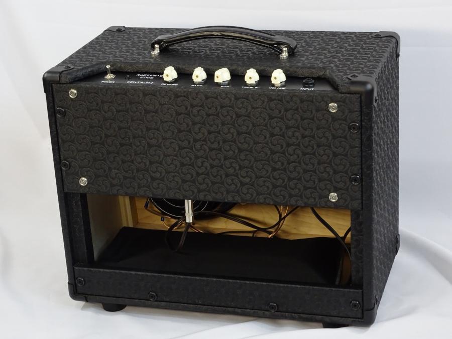 Raezer's Edge Centaur Hybrid Amp-dsc01339-jpg