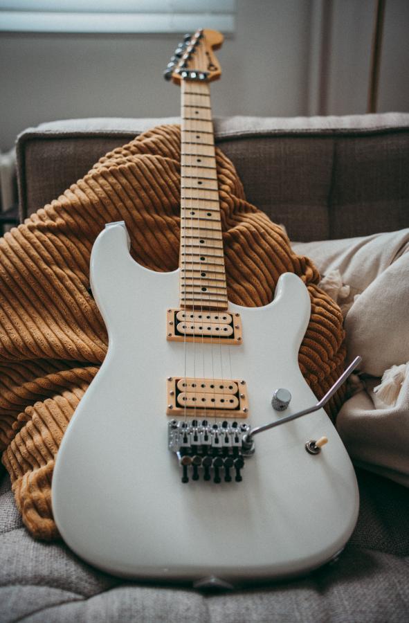 Fender Stratocaster for Jazz?-dsc05356-jpg