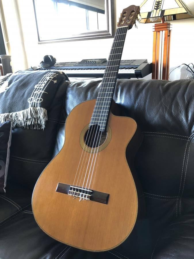 Acoustic electric nylon string guitar recommendations please-img_4655b-jpg