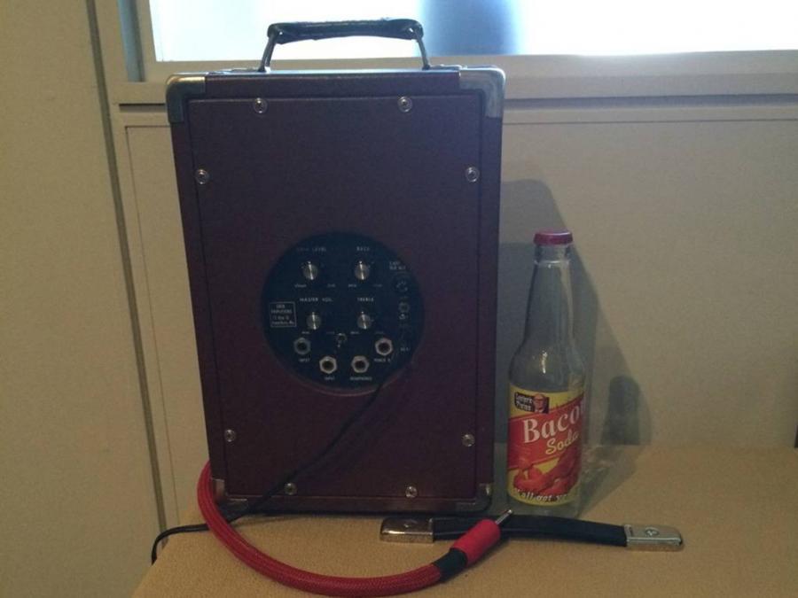 Amp to drive Fender JMUL 2-ohm load?-eden1_0887-jpg