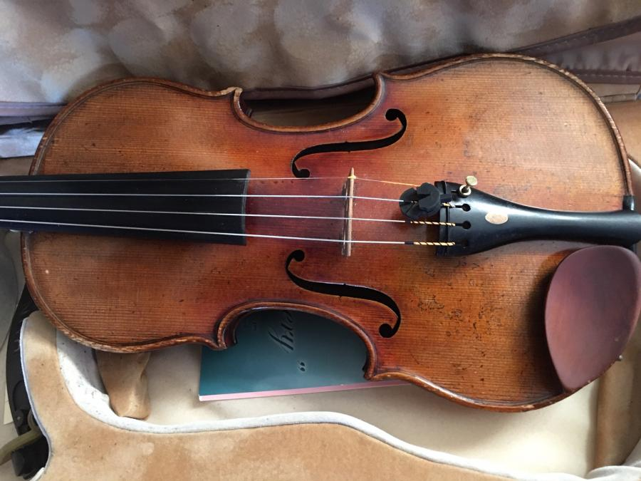 Too nice to gig with?-violin-jpg