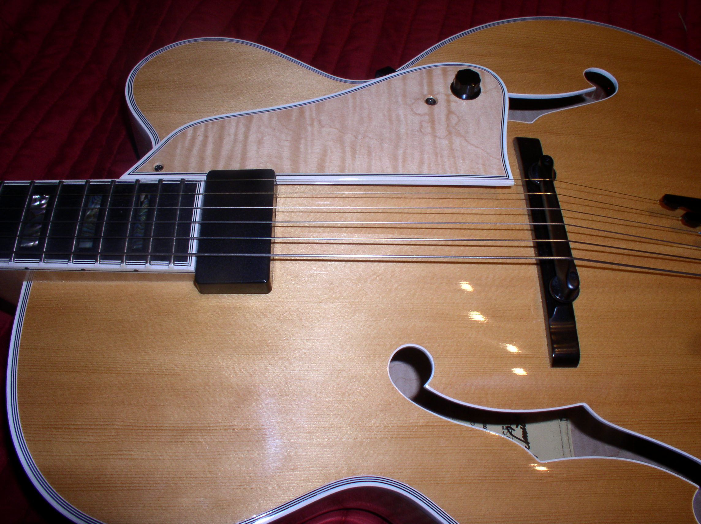 Mouse in my guitar!-mouse_copy-png
