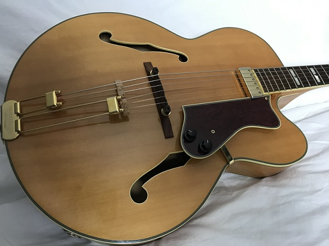 2003 Epiphone Emperor Regent Video added-epi-jpg