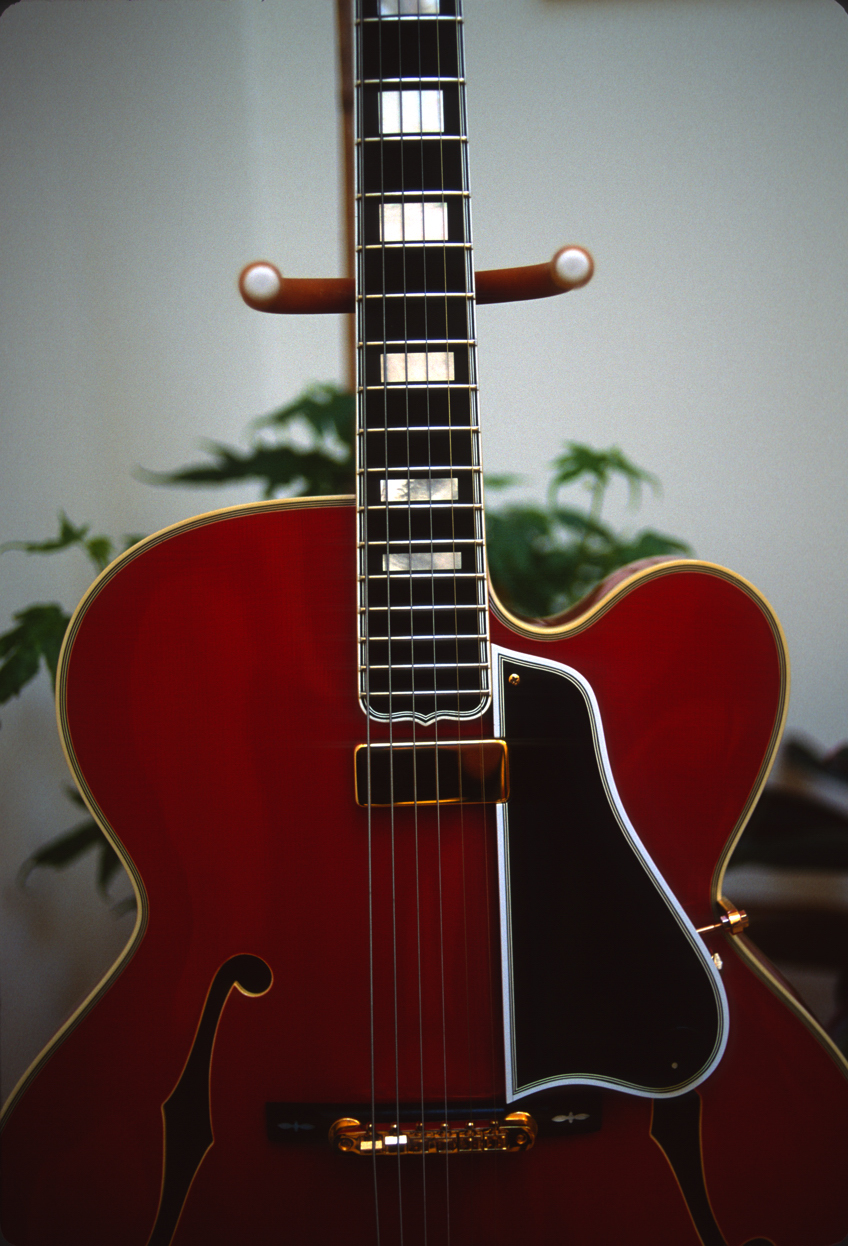 Thinline acoustic archtop?-1994-gobel-front-jpg
