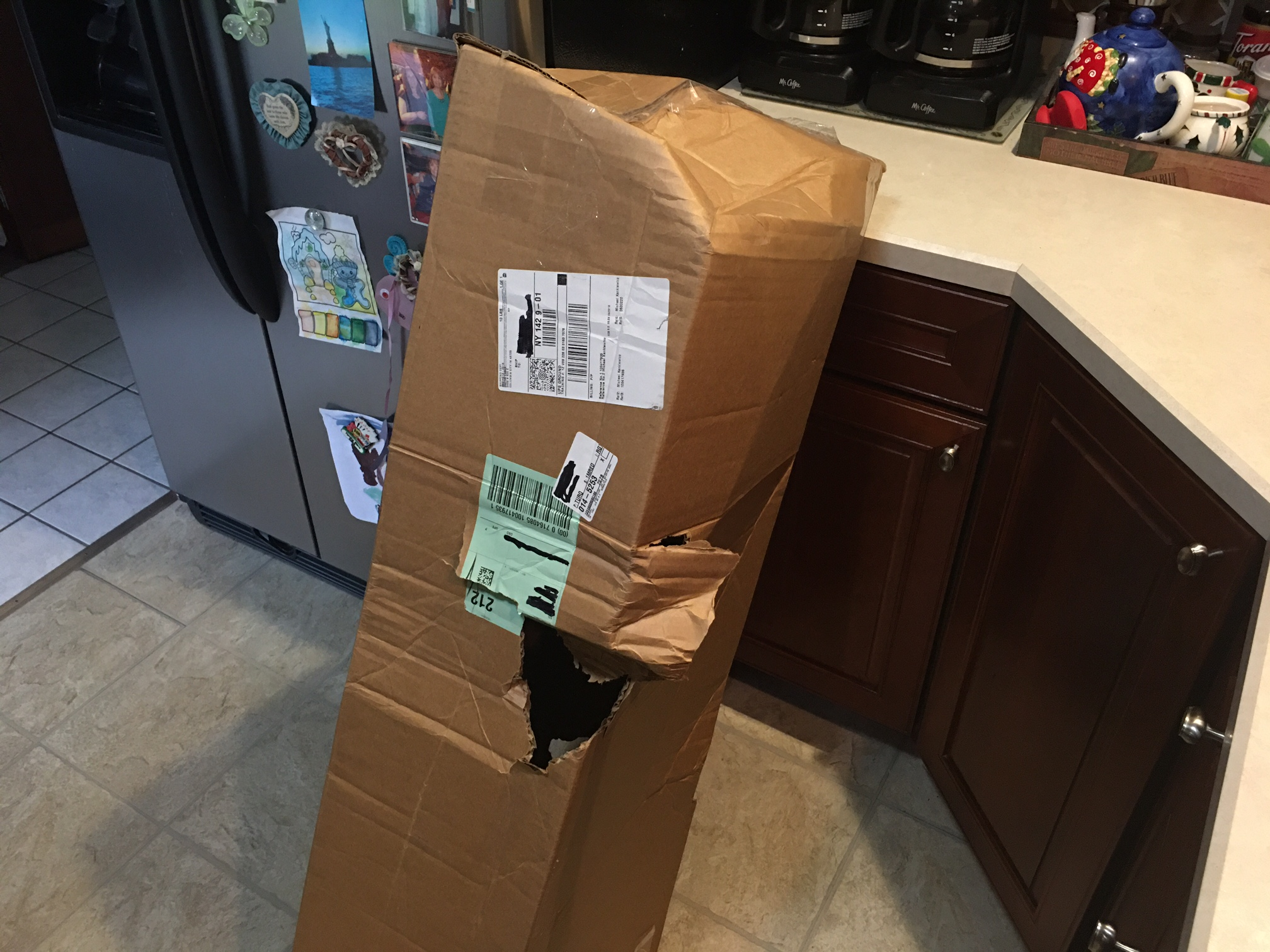 Off topic but shipping Fedex they Win. guitars too is my guess-box1-jpg