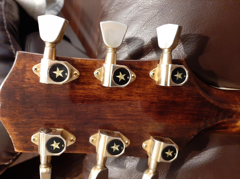 Japanese MANN Howard Roberts guitar (Ibanez 2453 ?)-20210123_205350-jpg