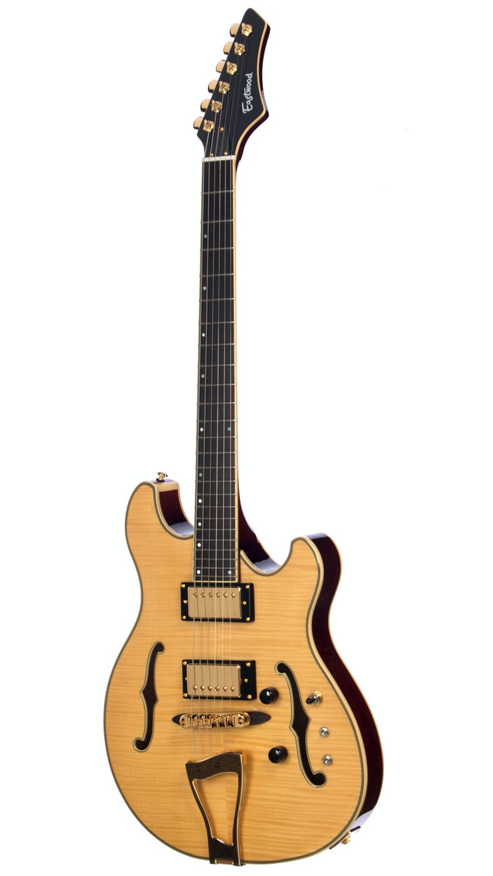 Languedoc (ie trey anastasio's) guitars-phish2_1800x1800-png-jpg