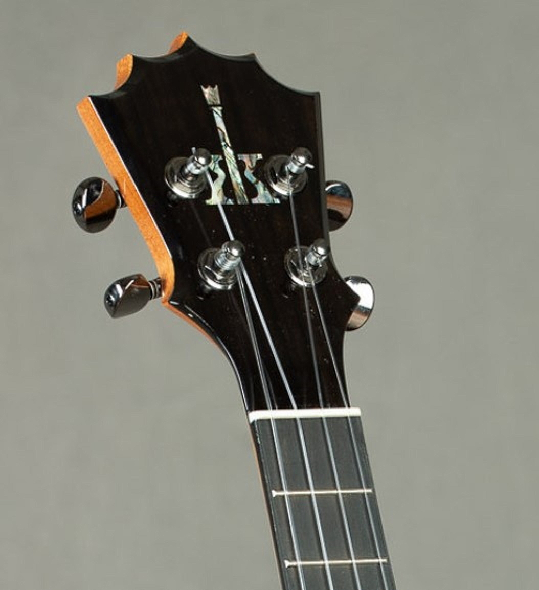 Visual Appearances of Headstocks-ktm-25-jpg