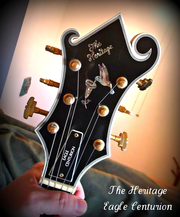 Visual Appearances of Headstocks-dscf0386-jpg