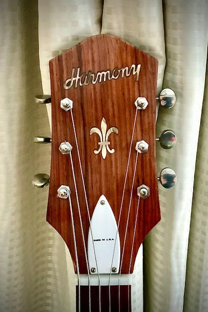 Visual Appearances of Headstocks-harmony-jpg