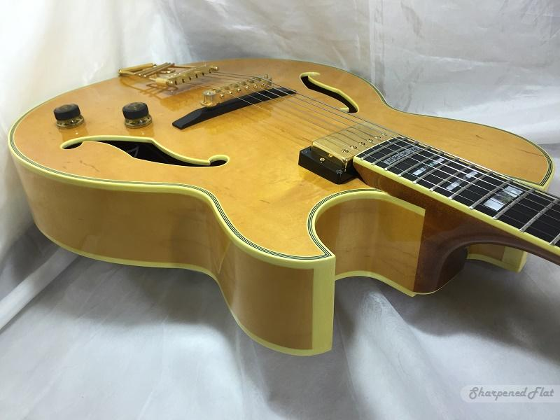 Ibanez working on new Metheny model with CC?-ibanez-pm-100-pinup-jpg