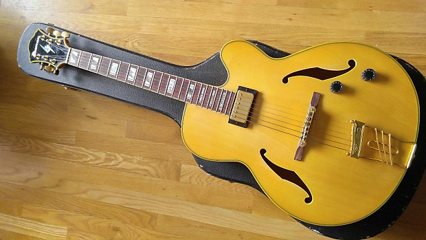 Ibanez working on new Metheny model with CC?-pm20-jpg