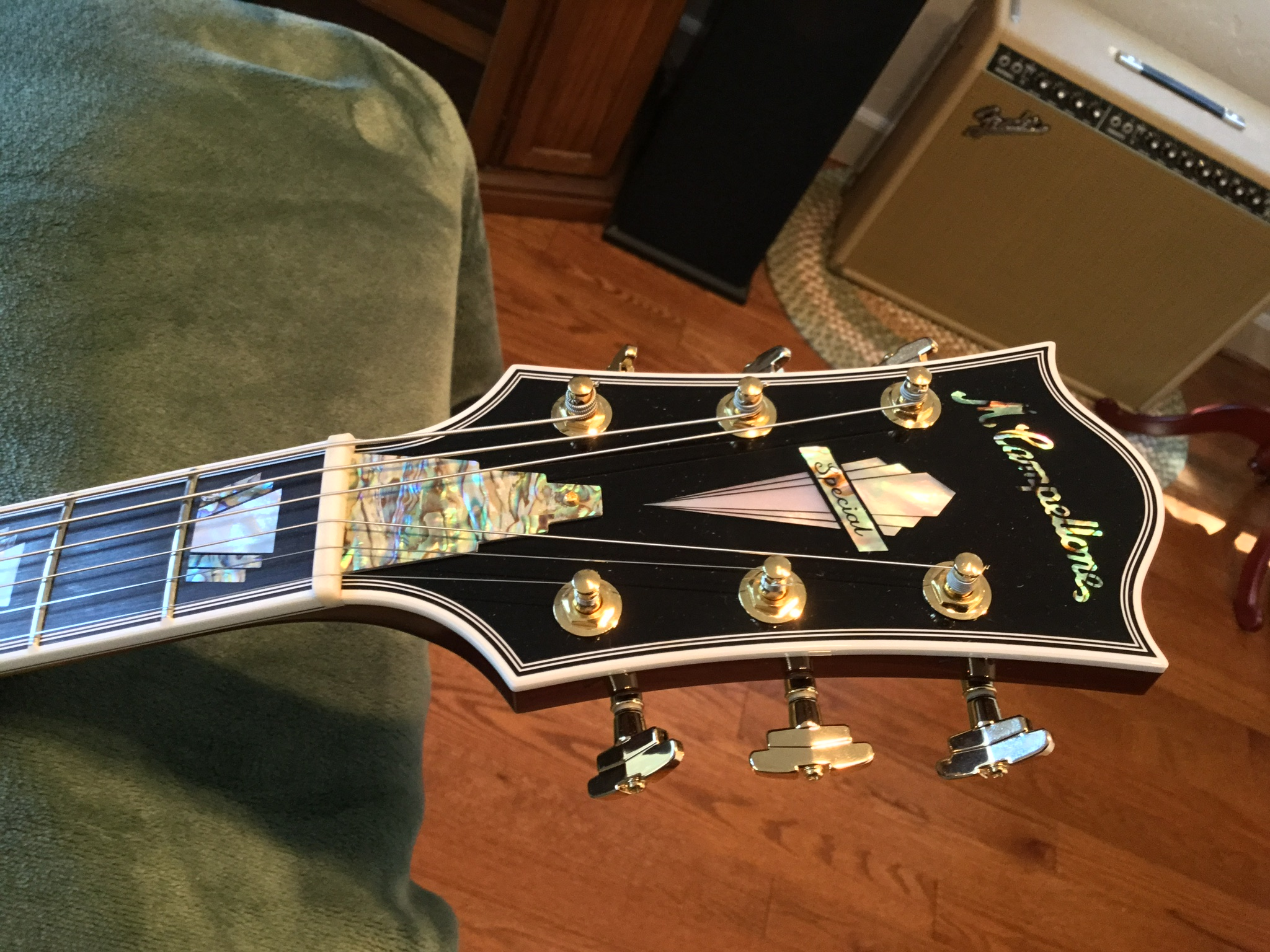 Visual Appearances of Headstocks-023dd83a-8879-40b6-aba8-34b272b17e52-jpeg
