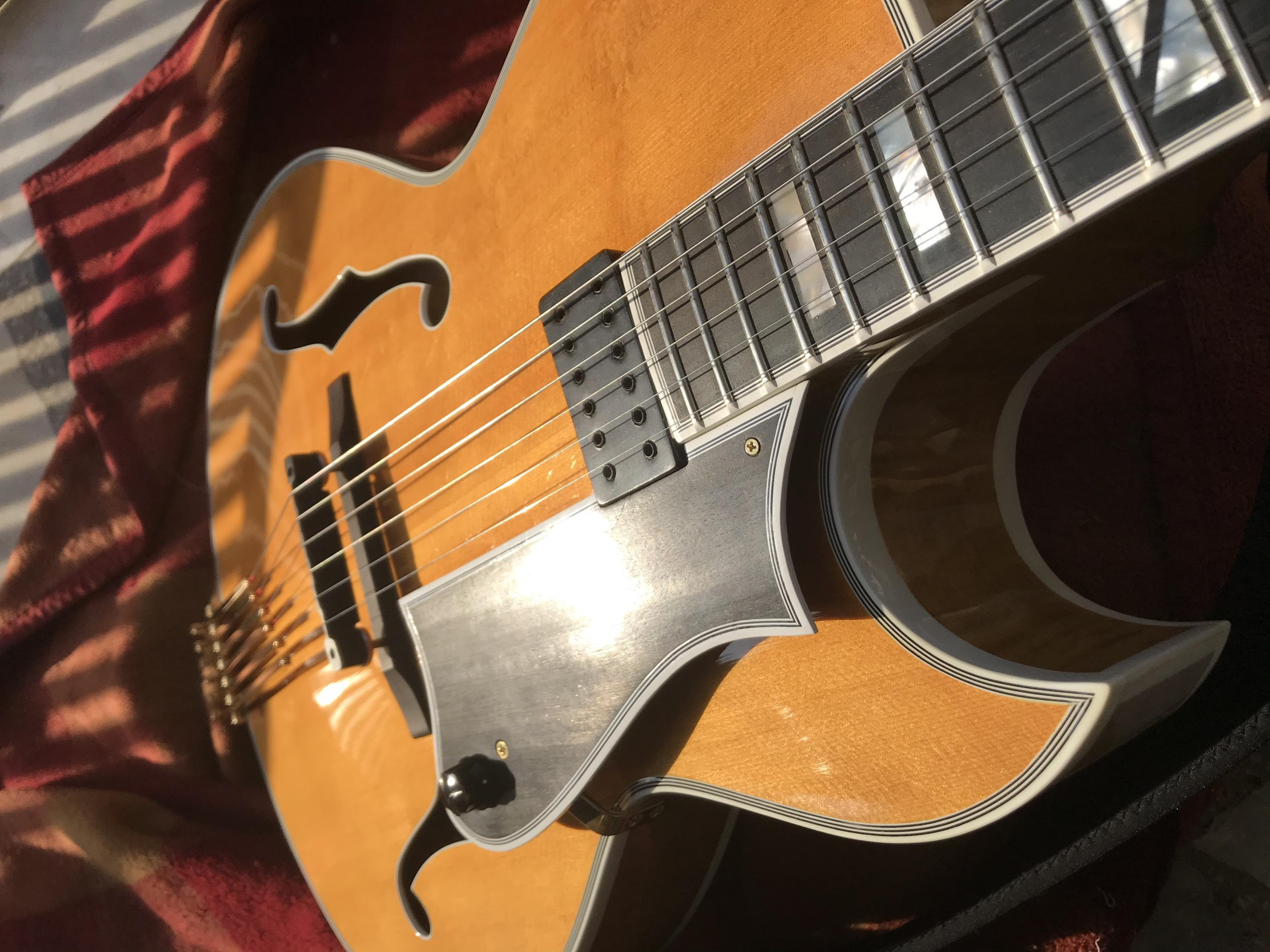 Two good things about Heritage guitars-img_6475-jpg