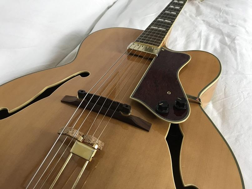 How to Mute Tailpiece Strings?-eer-jpg