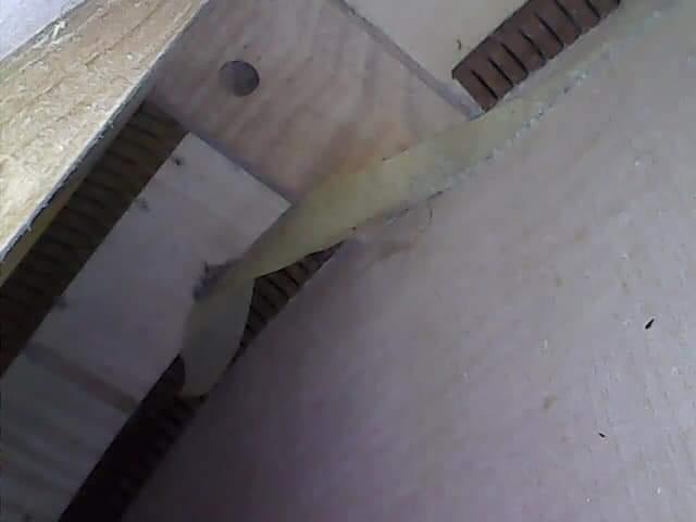 Inside my Loar 700-fb_img_1627430580825-jpg