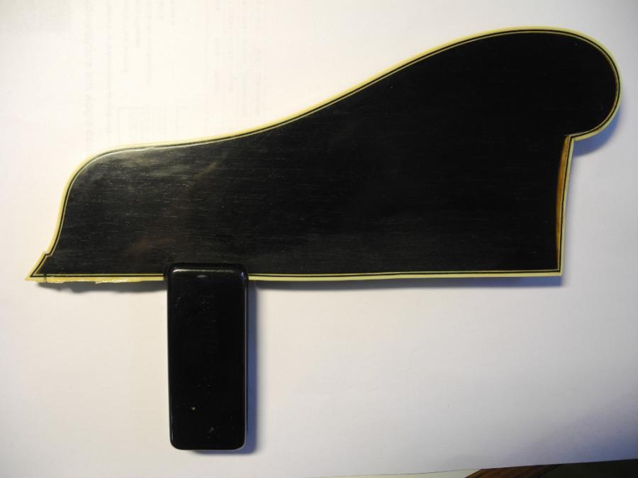Eastman AR810CE-pic_broken-pickguard-1-jpg