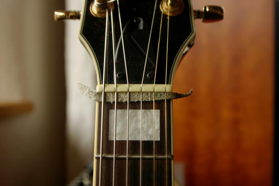 Solution to a major problem? (unwanted resonating string noise)-damp1-jpg