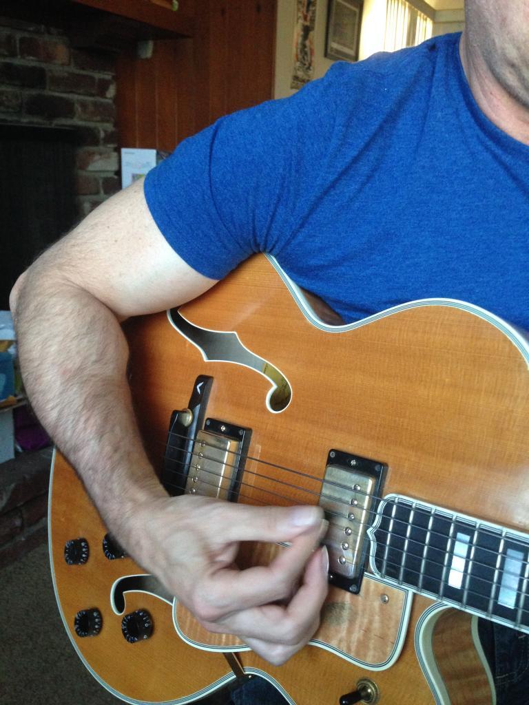 Benson Picking technique on Gibson L5 Wesmo-img_1222-jpg