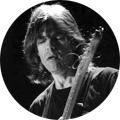 Mike Stern Guitar Equipment