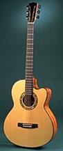 Linda Manzer guitar